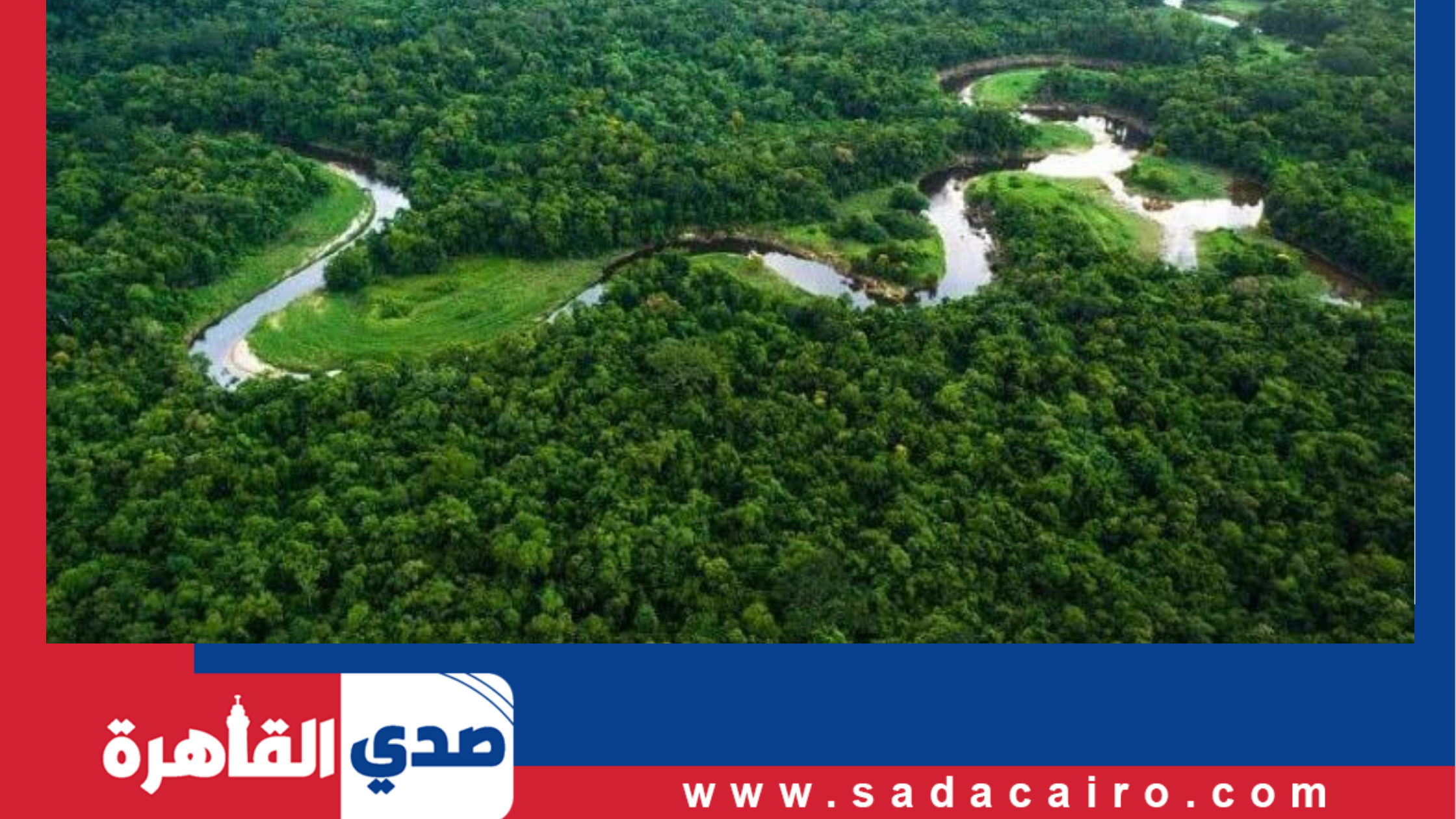 استمرار إزالة مساحات كبيرة من منطقة غابات الأمازون